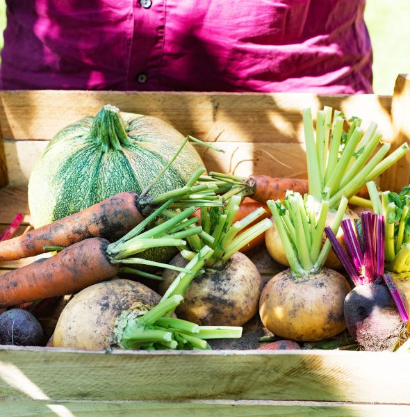 Grow, Cook, Share Cooking Clubs Launch